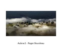 04 RB aubrac1