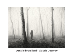 3 cd brouillard