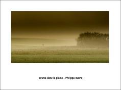 Brume_dans_la_plaine_pm