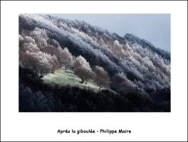 giboulée_phm