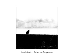 Le chat noir CJ