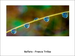 reflets_FT